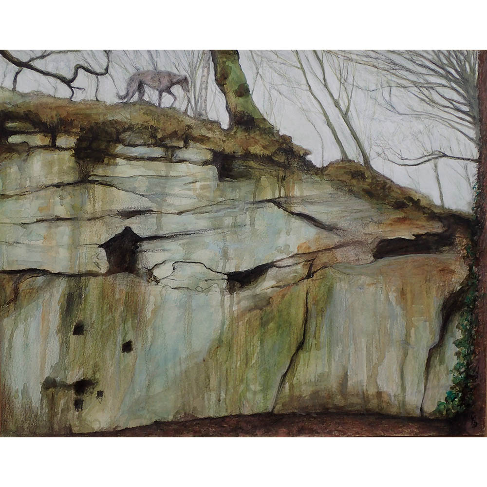 meanwood-quarry-wall